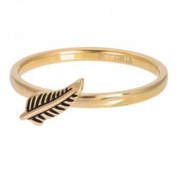 "IXXXI vulring 2mm ""Symbol Feather"" goud"
