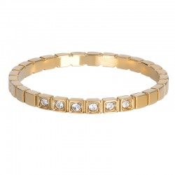 ixxxi vulring palace goud 2mm